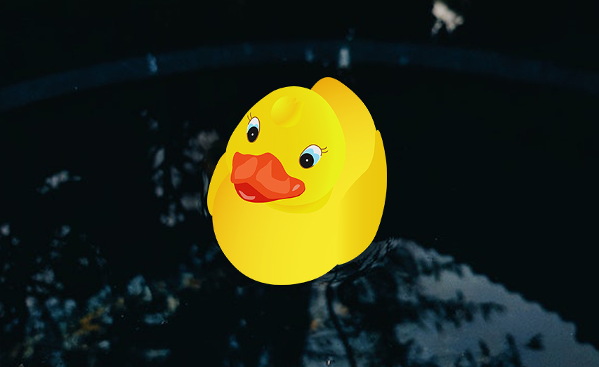 funny-duck