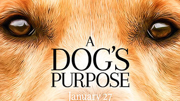 golden-retriever movies